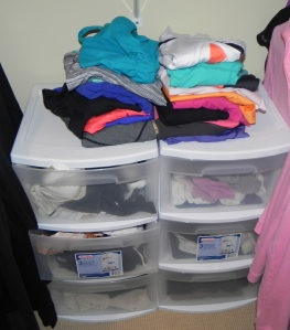 My socks, underwear, bras, bathing suits and work out tops are grouped together in this plastic storage unit.